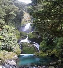 t_NZ22.jpg