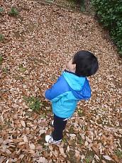 t_P1020084.jpg