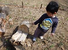 2歳6ヶ月:さとやまウォーク